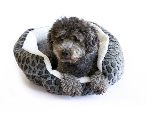 Danazoo Textured Cuddler Pet Bed Black Find Out More About The Great Product At The Image Link This Is An Amazon Affiliat Dog Bed Cat Bed Dog Bed Furniture