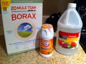 Non-Toxic All Natural Toilet Bowl Cleaner