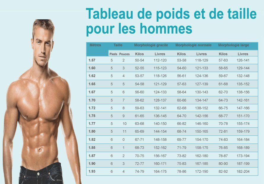 pourcentage de graisse corporelle pour l abs femelle visible