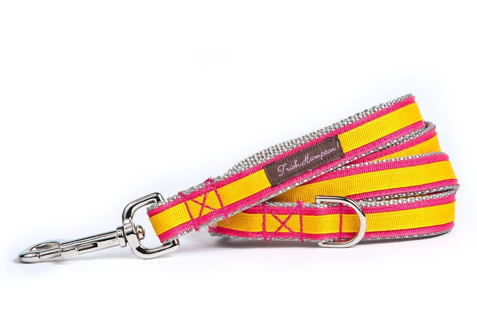 Double Ribbon Stripe Coral/Gold Dog Leash