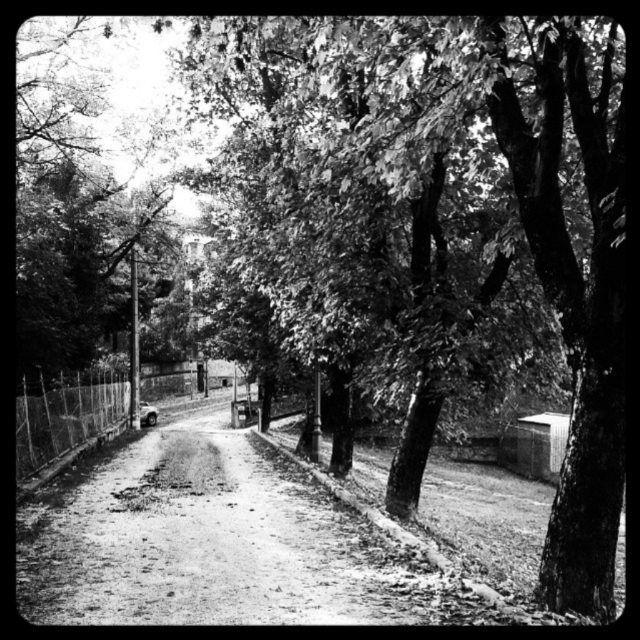 #rocca del #popolo #cesena #romagna  #cesenaturismo  #streetphotography #square #igfriends_emiliaromagna_  #instaromagna  #igersfc #igersemiliaromagna #ig_forli_cesena #ig_emiliaromagna #vivoemiliaromagna  #vivoforlicesena  #ig_emilia_romagna #volgoitalia #volgoemiliaromagna #volgoforlicesena #emiliaromagna_super_pics