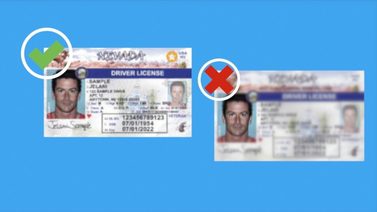 insurance for permit drivers ny