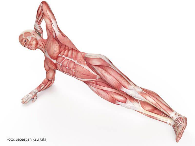 Yoga Übungen Bauchmuskeln | Micha | Pinterest | Übungen bauchmuskeln ...