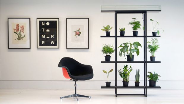 office plant room dividers - google search | project // clarendon