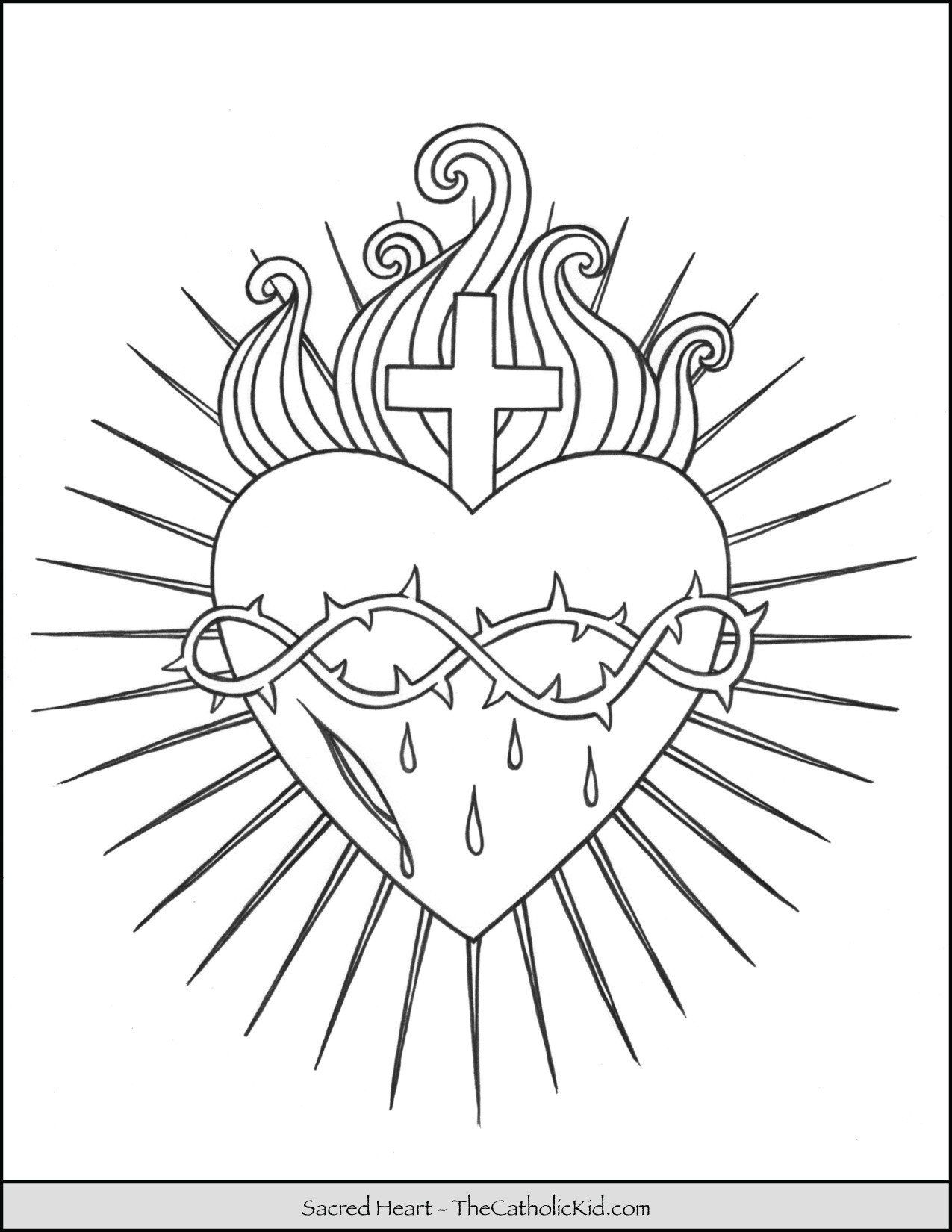Human Heart Coloring Worksheet Coloring Pages Color