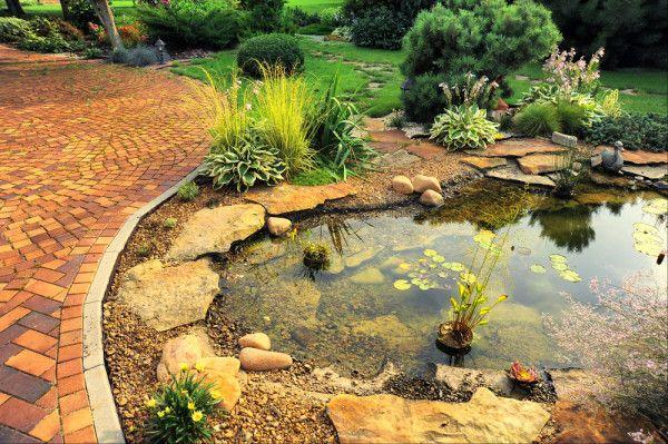 Hardscape Avec étang