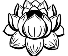 Resultat De Recherche D Images Pour Fleur Dessin Facile 111