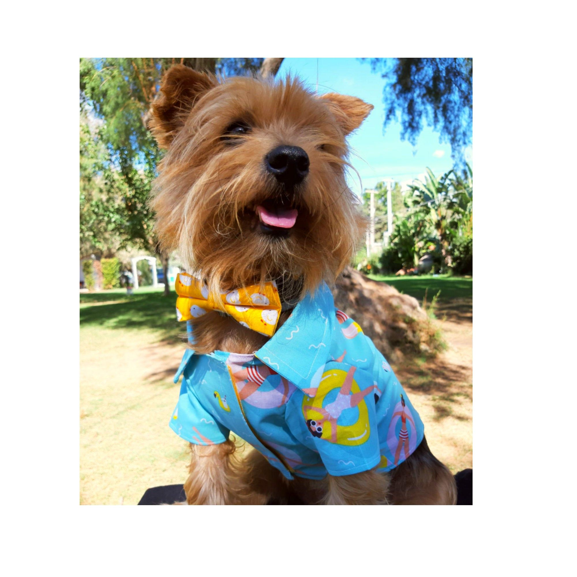 Dog Shirt Dog T Shirt Dog Costume Puppy Clothes Dog Hoodie