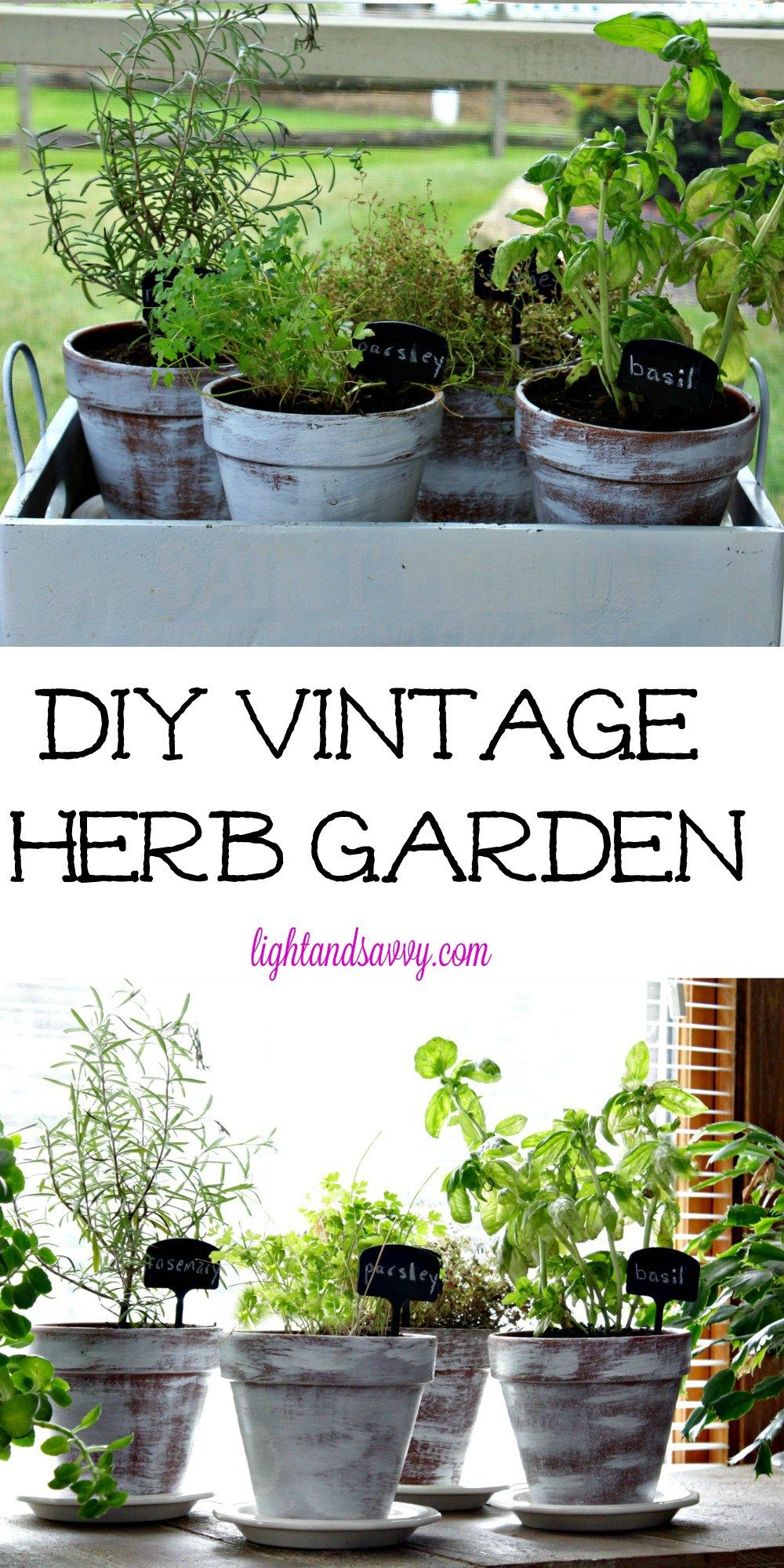 DIY Vintage Herb Garden - Always have fresh herbs on hand - Make your grocery store herb plants last by re-potting them into a vintage looking planter that you can easily make yourself in minutes!