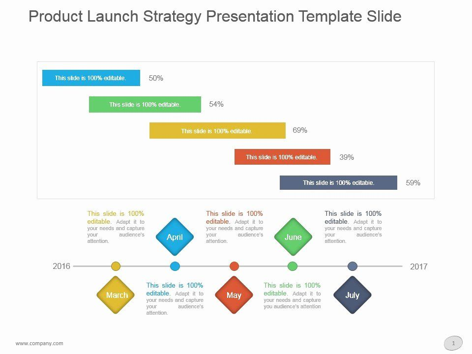 40 Product Launch Plan Template in 2020 Business plan