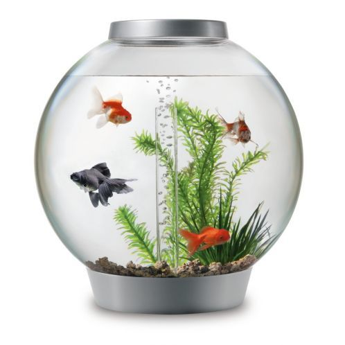 Goldfish Bowls Aquariums Goldfish Bowls View All Reef One Aquariums Goldfish Bowls Biorb Fish Tank Biorb Aquarium Kit