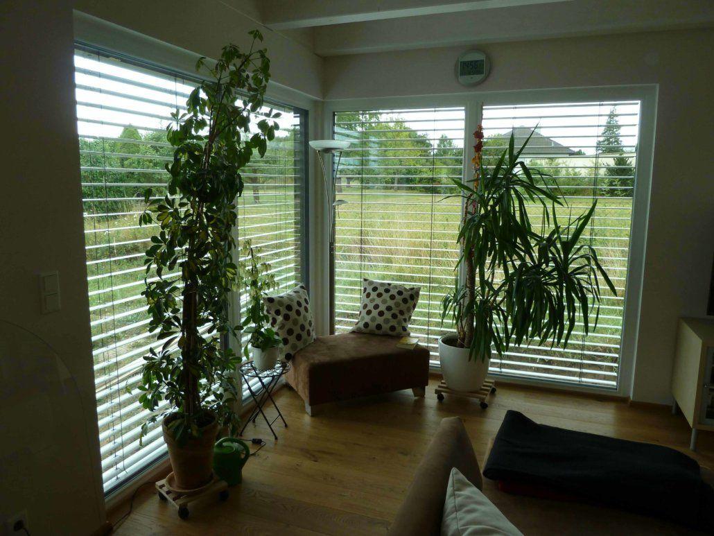 innenausbau wohnzimmer, innenausbau haus, innenausbau ideen ... - Grose Wohnzimmer Pflanzen