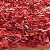 Tapis cuir rouge salon.