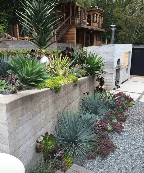 5 Drought Tolerant Landscaping Ideas For A Modern Low Water Garden Freshome Com In 2020 Low Water Gardening Tropical Landscaping Succulent Landscape Design
