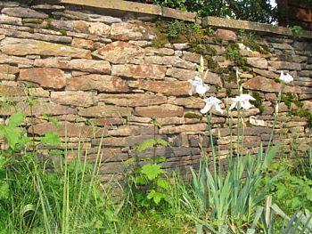 17 best ideas about trockenmauer bauen on pinterest   ruinenmauer, Garten Ideen