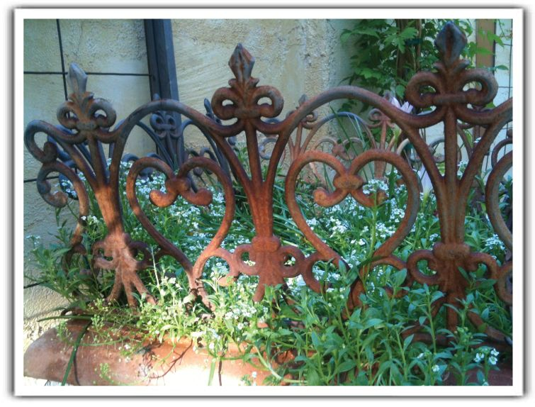 Gardens · Iron Fencing Placed In Terra Cotta Container