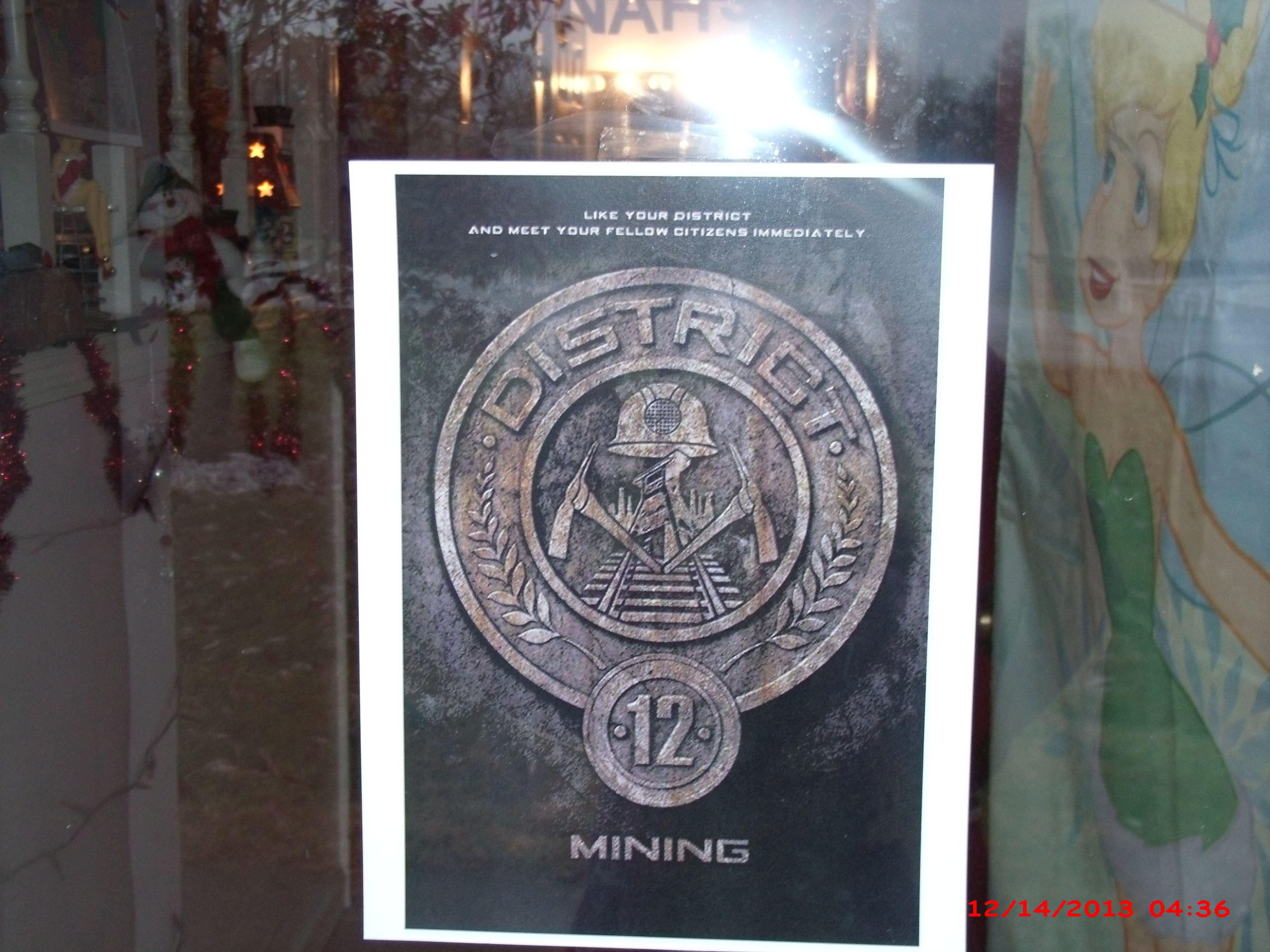 District 12 emblem