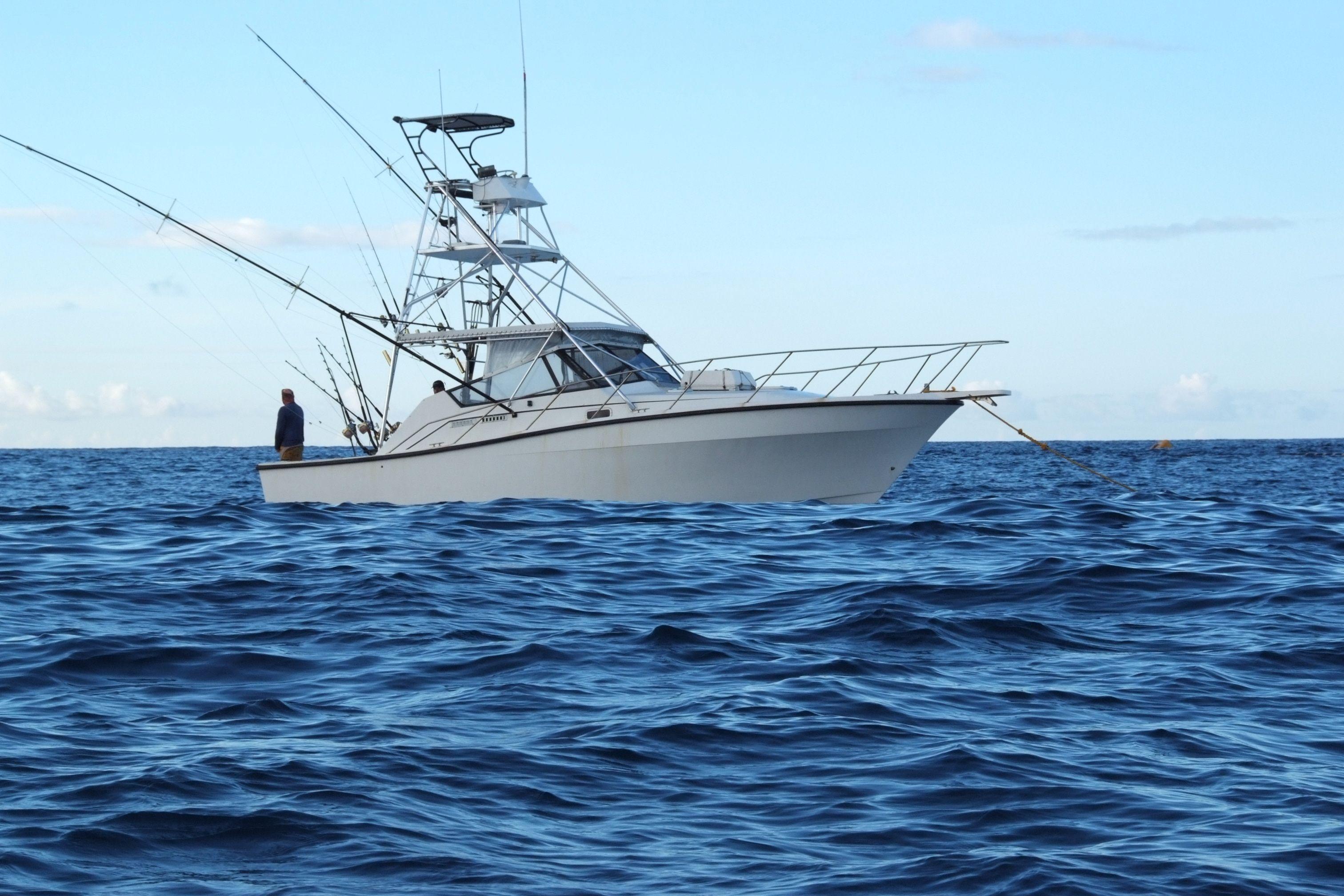 Ascension Island Blue Marlin Big Game Fishing | Boats ...