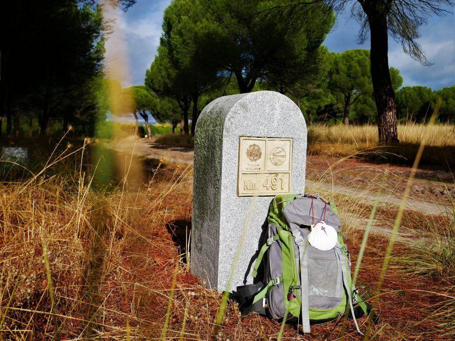 De Valladolid A Santiago El Camino De Madrid Albergues Camino De Santiago Santiago Santiago De Compostela