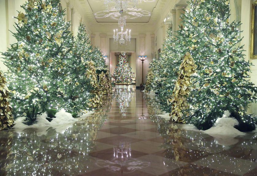 Holidays White House Christmas Tree White House Christmas White House Christmas Decorations