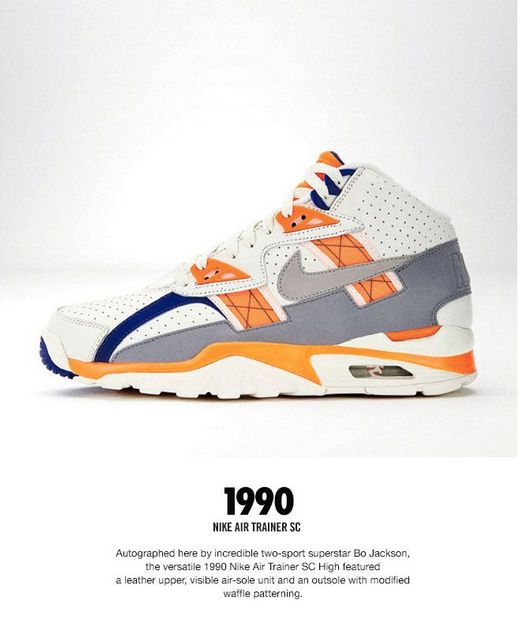 best service 332ae 913a5 Tracing The Nike Trainer Family Tree