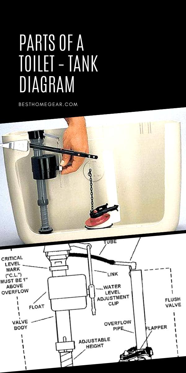 Toilet Tank Parts Diagram : toilet, parts, diagram, Toilet, Parts, Diagram, Repair, Guide, Tank,, Repair,