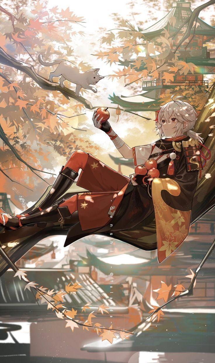 ZENITH▪︎{Genshin Impact Oneshots} - kazuha and albedo pics