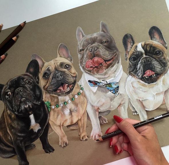 Pin by Lynne FreemanGassem on art French bulldog