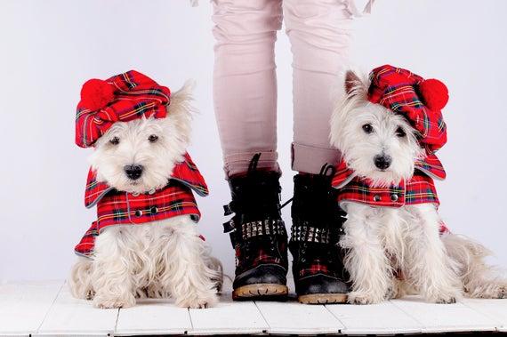 Tweed Dog Coat And Cap Set Scottish Dog Coat Westie Tartan Parade Jacket And Hat Tartan Day Dog Coat Scottishdog Dog Coats Tartan Dog Westies