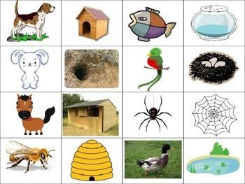 Match the animals to their homes Animals, their homes