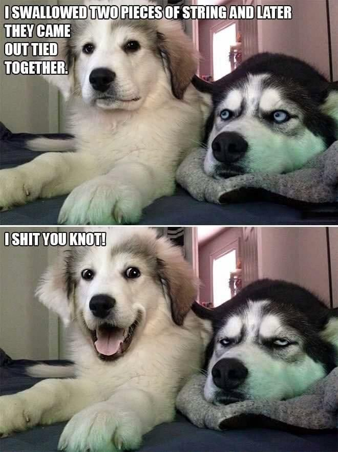 Top 22 Funny Photos Of The Day #funnyphotos