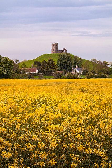 Berrow Mump | Somerset