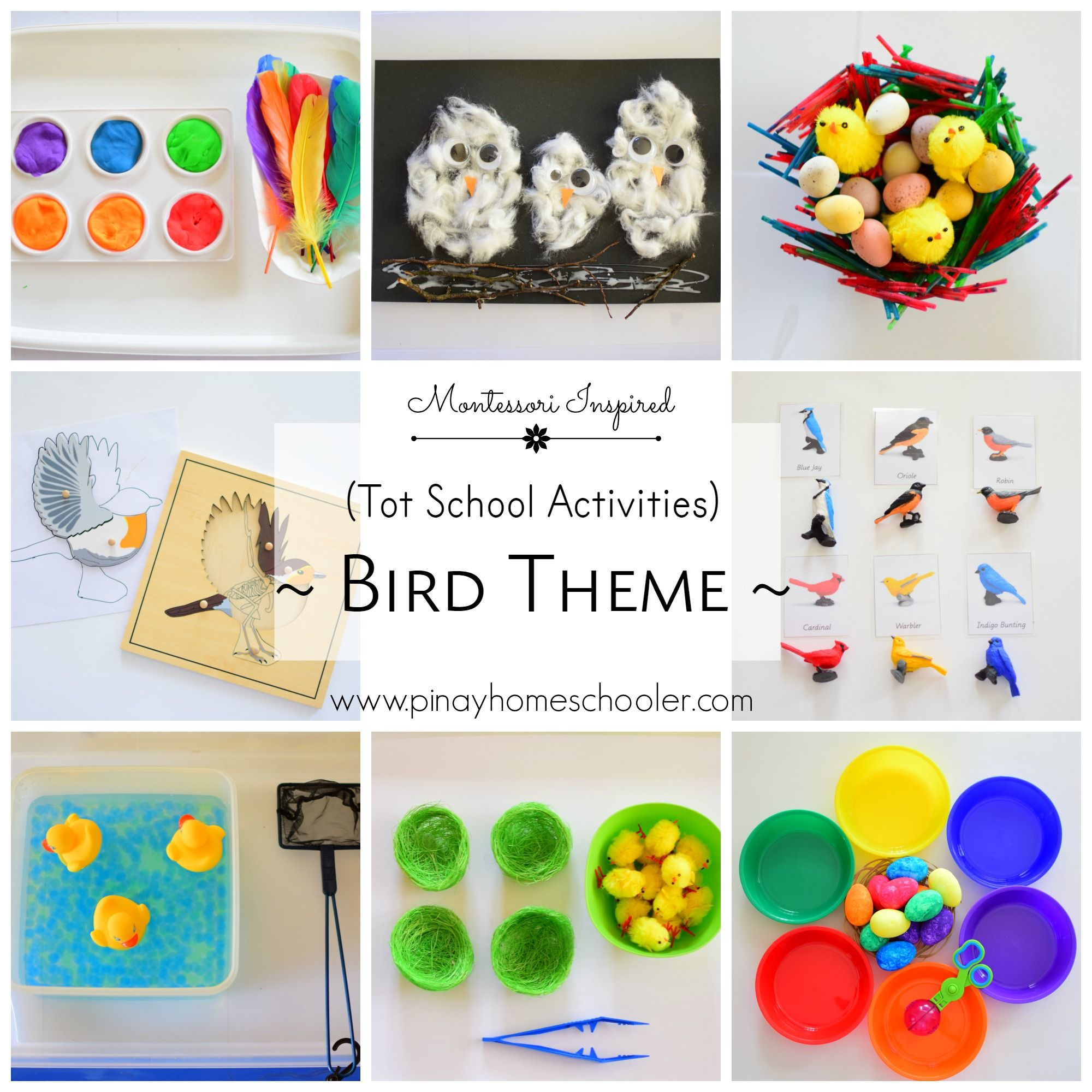Bird Themed Activities For Toddlers