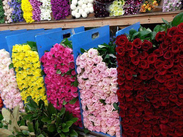 꽃 시장 - Tìm với Google