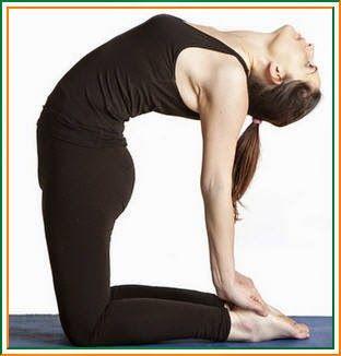 ustrasana / उष्ट्रासन और आपका स्वास्थ्य  easy yoga poses