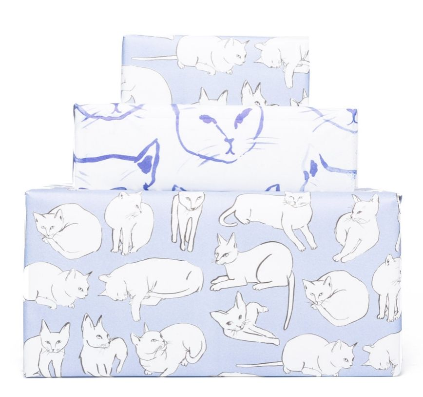 Kitty cat gift wrap!