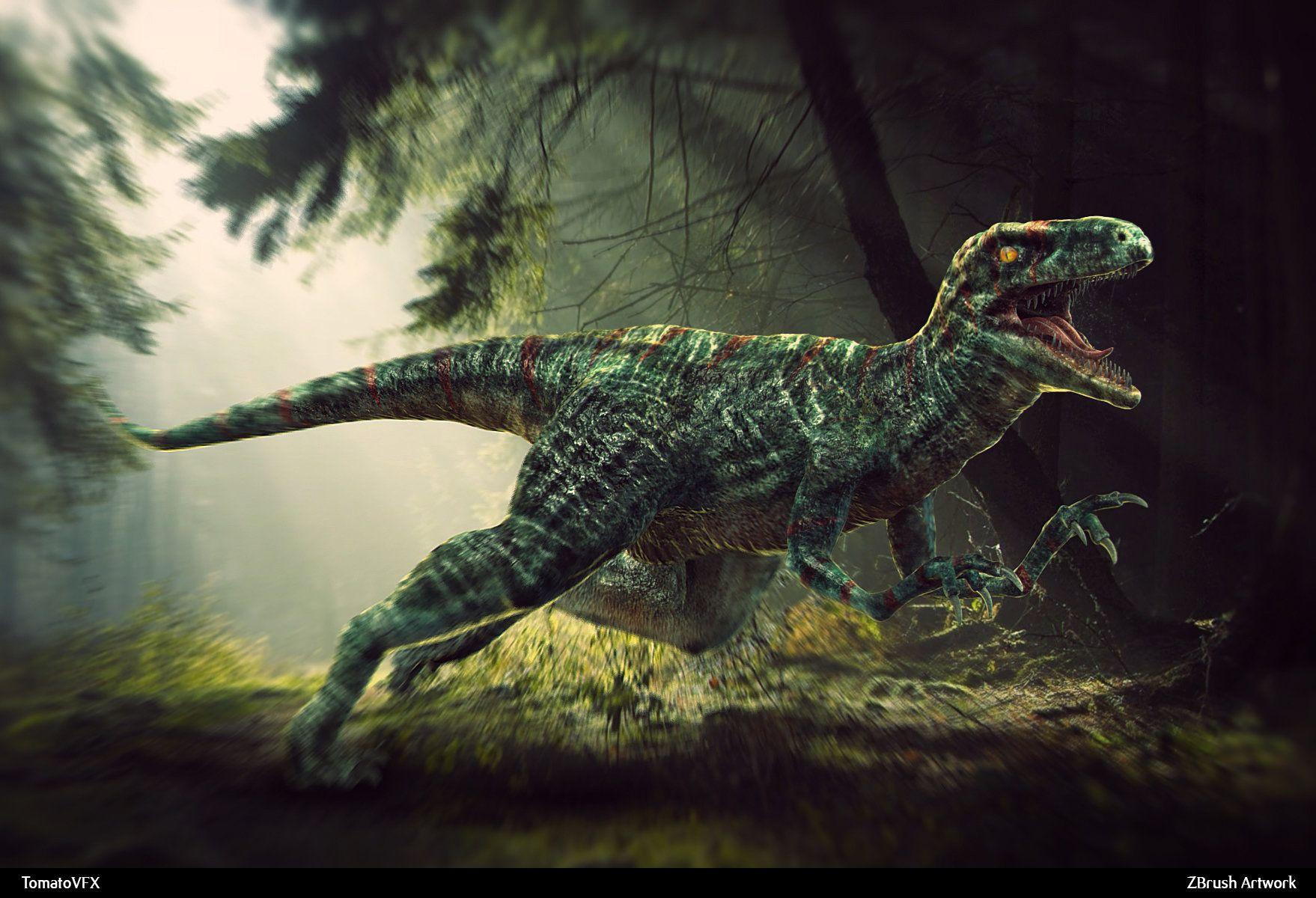Animales Fondos De Escritorio Hd: Animales Dinosaurio Velociraptor Fondo De Pantalla