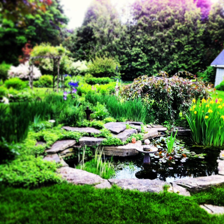 Garden Decor Ontario: Amazing Garden At The Hidden Garden On The Square B And B