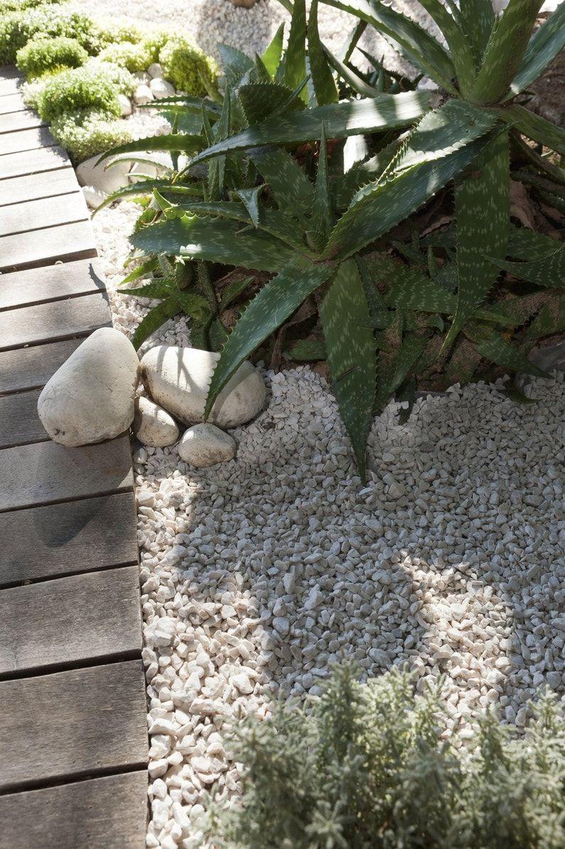 Epingle Sur Amenagement Jardin