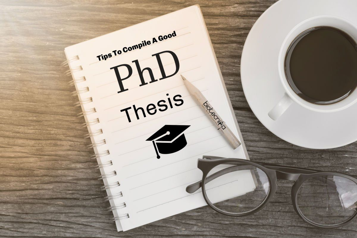 Doctoral dissertation assistance style