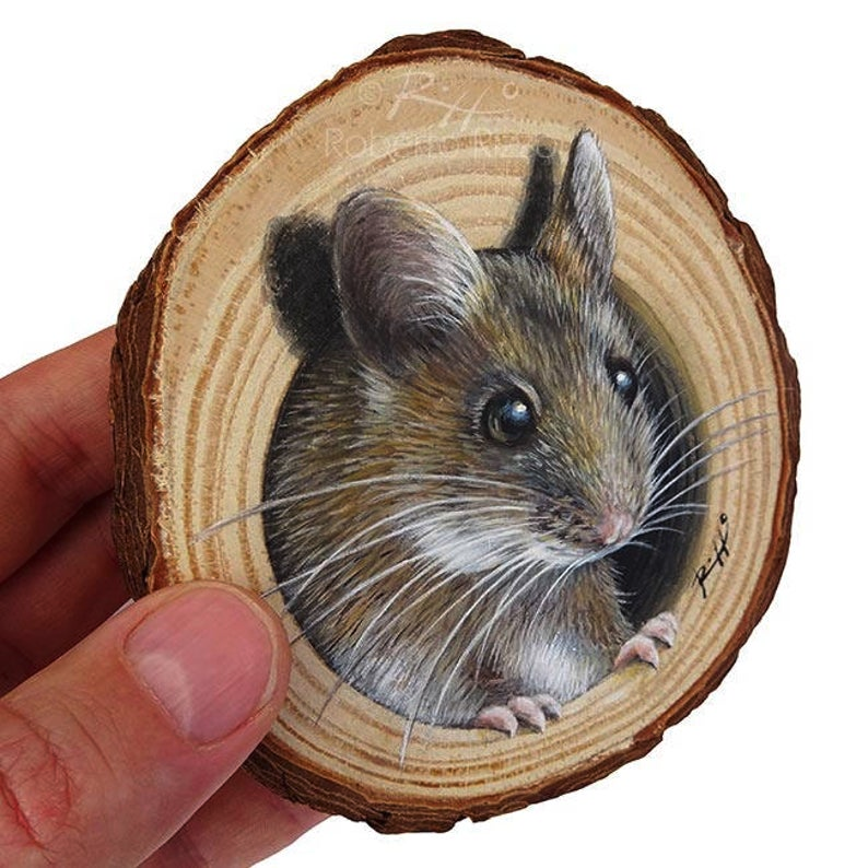 A Sweet Mouse Coming Out from Its Lair, a Unique W
