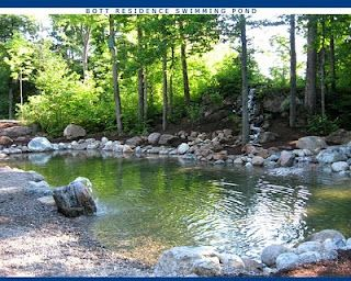 Backyard natural swimming ponds for the home pinterest swimming backyards and the pond - The pond house nature above all ...