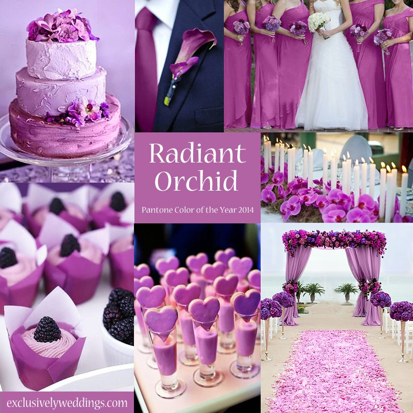 10 Awesome Wedding Colors You Havent Thought Of Orchid Wedding