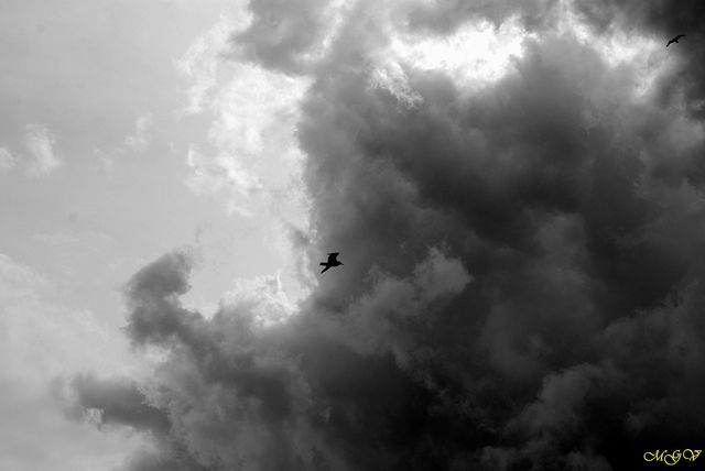 Dunkerque Sky by mgverspecht, via Flickr