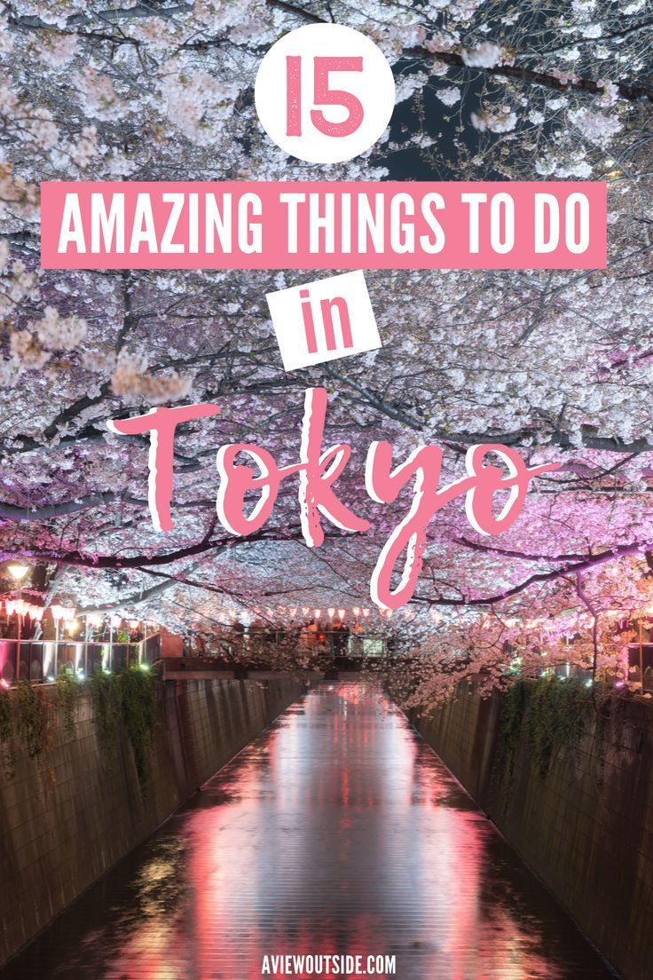 You can't visit Tokyo and don't try some out these bucket list worthy acivities. From learning how to cook Japanese food with locals to whizzing around Tokyo Mario Kart style, this list has everything you need to know about what to do in Tokyo! #tokyobucketlist #tokyothingstodo #thingstodojapan #tokyotraveltips #tokyotraveladvice #traveltokyo