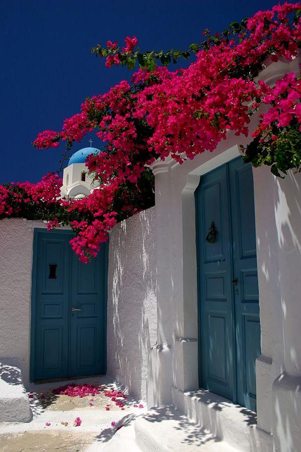 Santorini village house bougainvillier