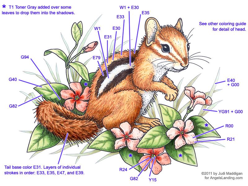 Copic Coloring Guide: Chipmunk & Vinca 2 by Crafts - Cards and ...
