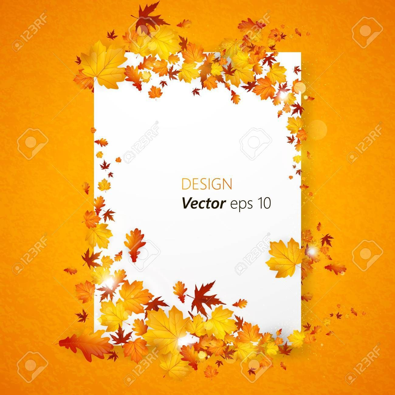 White blank on background with autumn maple leaves. Vector ,