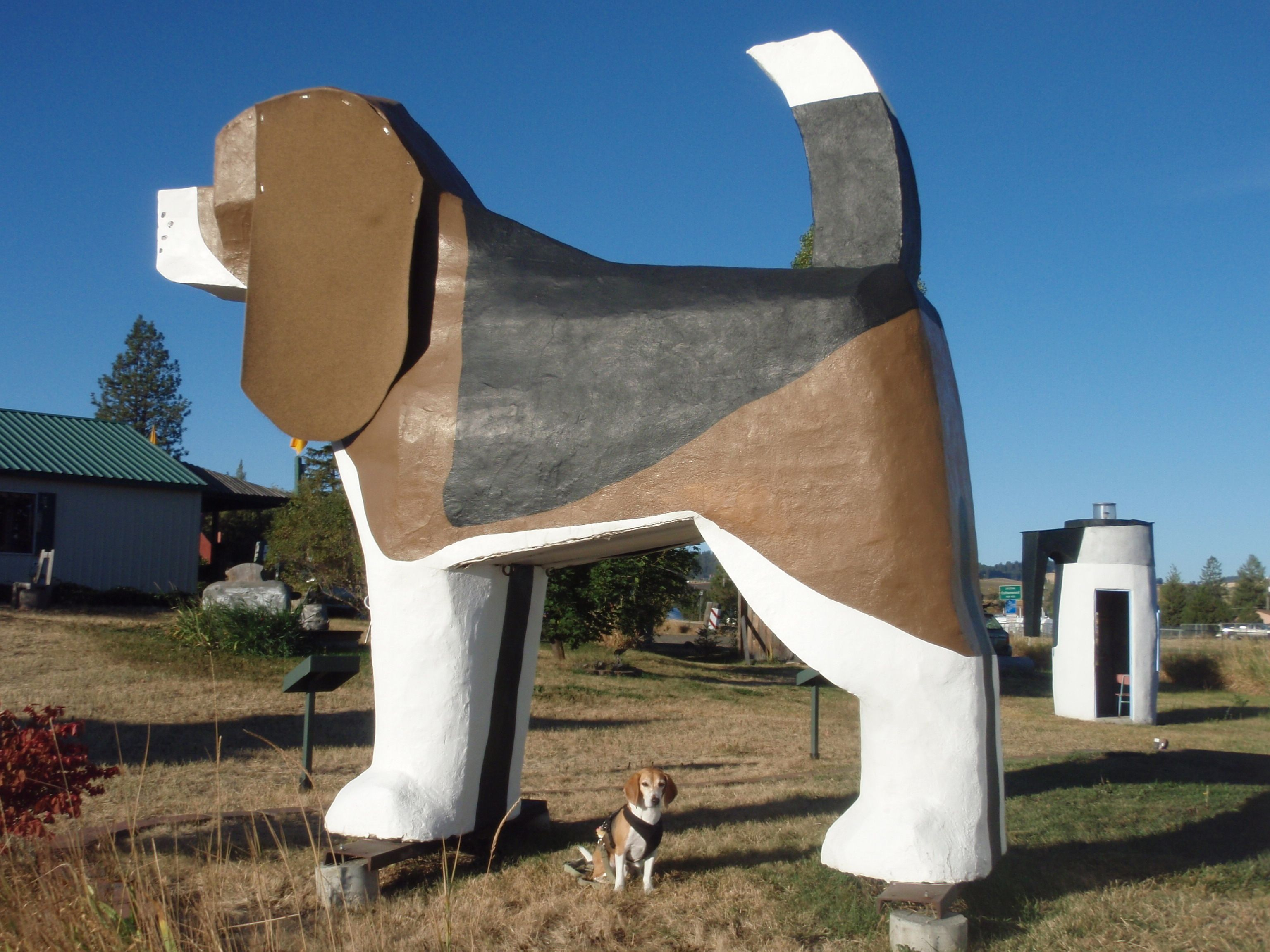 Ever Wanted To Spend The Night Inside A Giant Wooden Beagle You