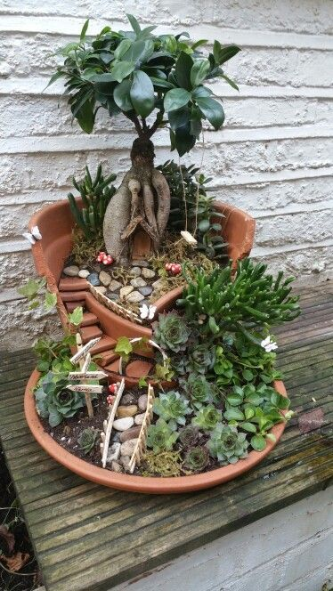 My first miniture garden what a fun project! is part of Indoor fairy gardens -